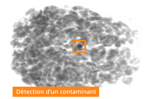contaminants de pierre dans les produits alimentaires